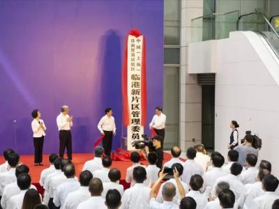 上海自贸试验区临港新片区今揭牌(图)